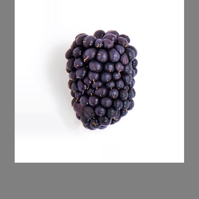 A ripe blackberry
